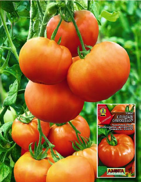 Томат быстренок: характеристика и описание сорта, урожайность, фото, отзывы