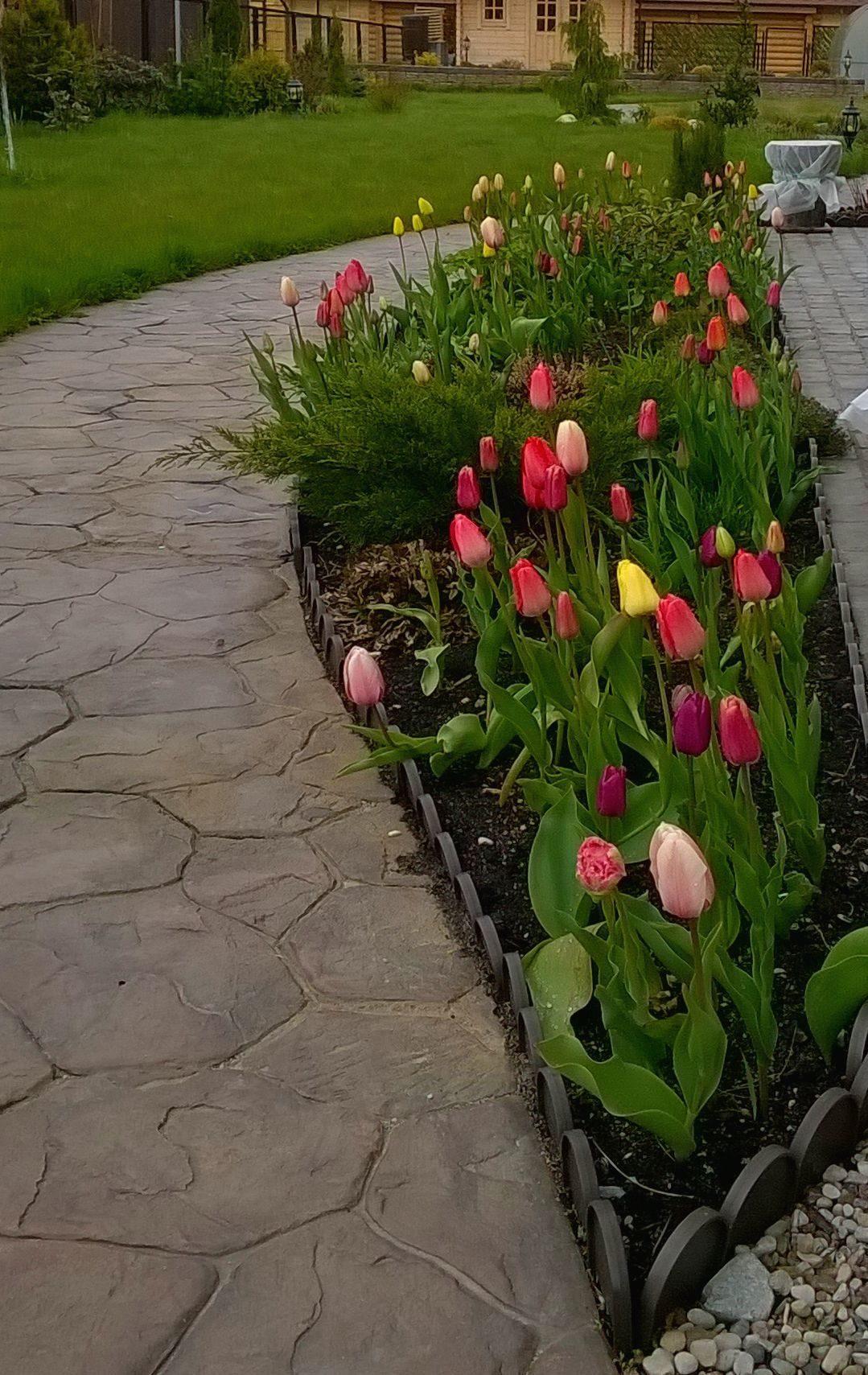 Дизайн сада (154 фото): ландшафтное проектирование участка и огорода площадью 6 соток, с  какими цветами сочетается лилейники