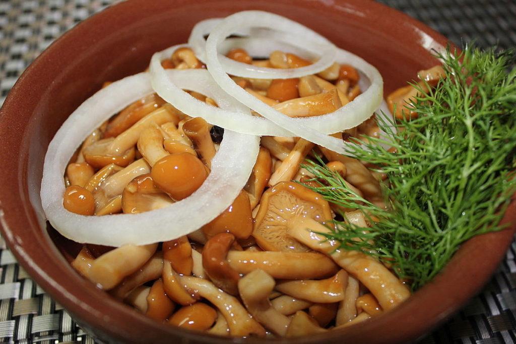 Маринованные опята: вкусные рецепты заготовок на зиму
