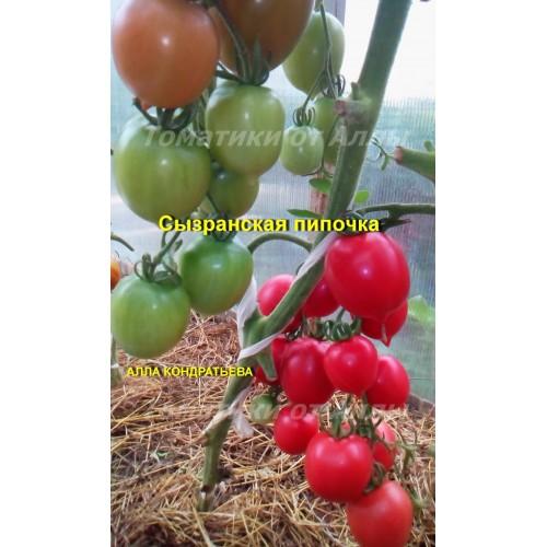 Характеристика и описание сортов томатов с пипочкой