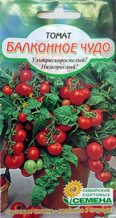 Как вырастить дома помидоры «балконное чудо»?