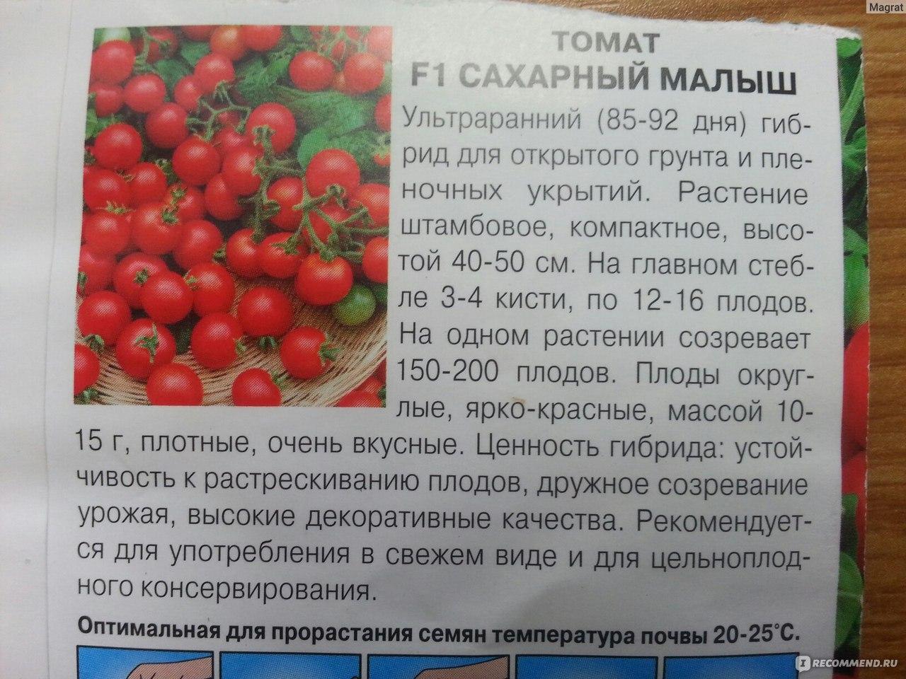 Поразит урожайностью и вкусом — томат «белле f1» и секреты агротехники от огородников со стажем