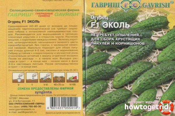 Описание сорта огурца эколь - мыдачники