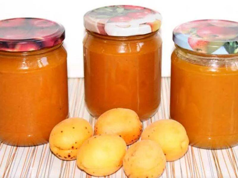Абрикосовое повидло на зиму: пошаговые рецепты повидла из абрикосов с фото