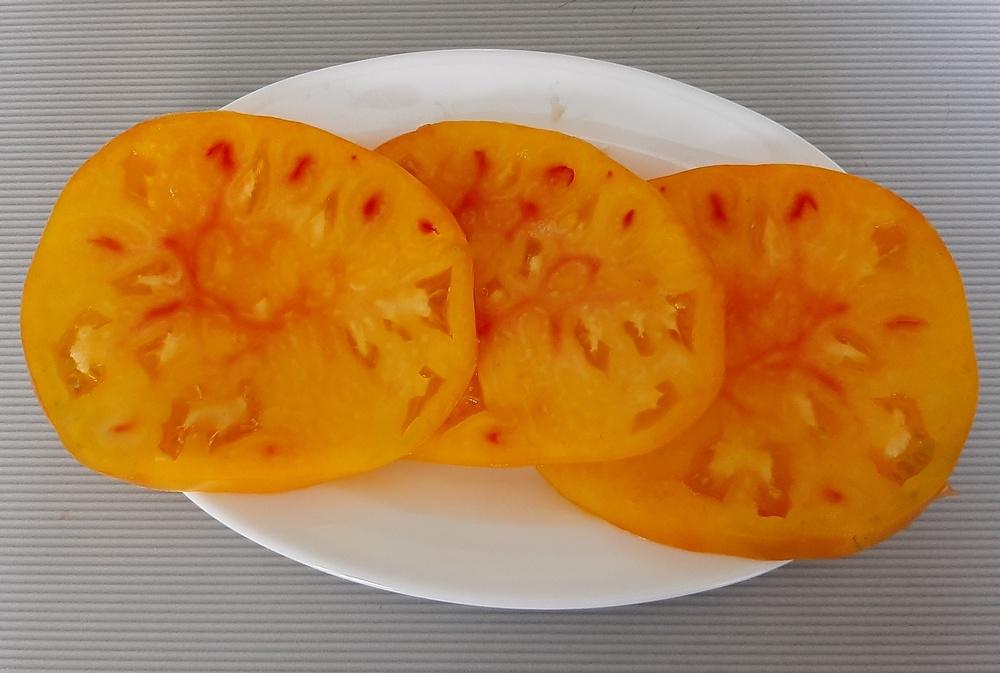 Томат гавайский ананас: описание и характеристика сорта, выращивание и уход с фото