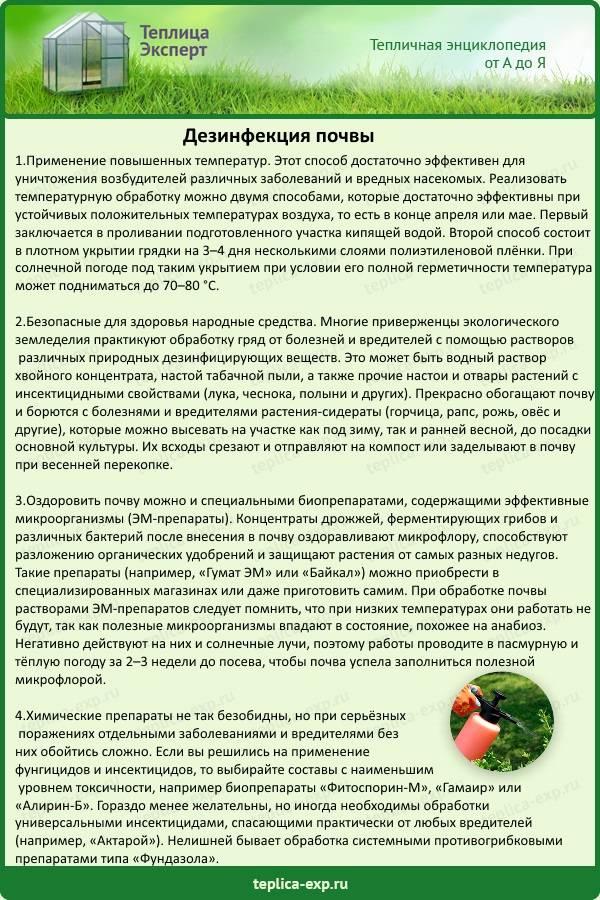 Гербицид от борщевика: описания лучших препаратов и правила обработки