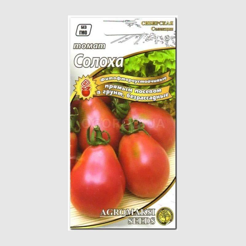 Томат солоха: фото помидоров и отзывы об их вкусовых качествах и сложностях при выращивании, плюсы и минусы сорта