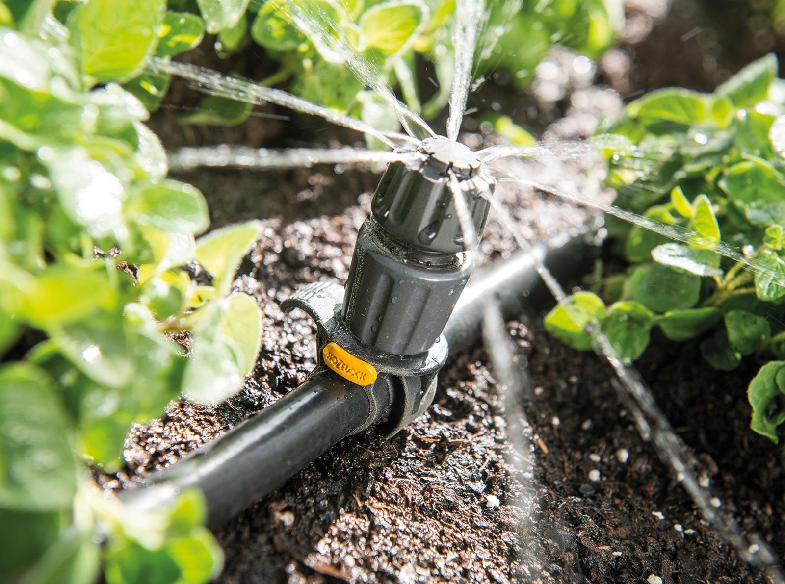 Системы полива для теплиц: характеристики и преимущества