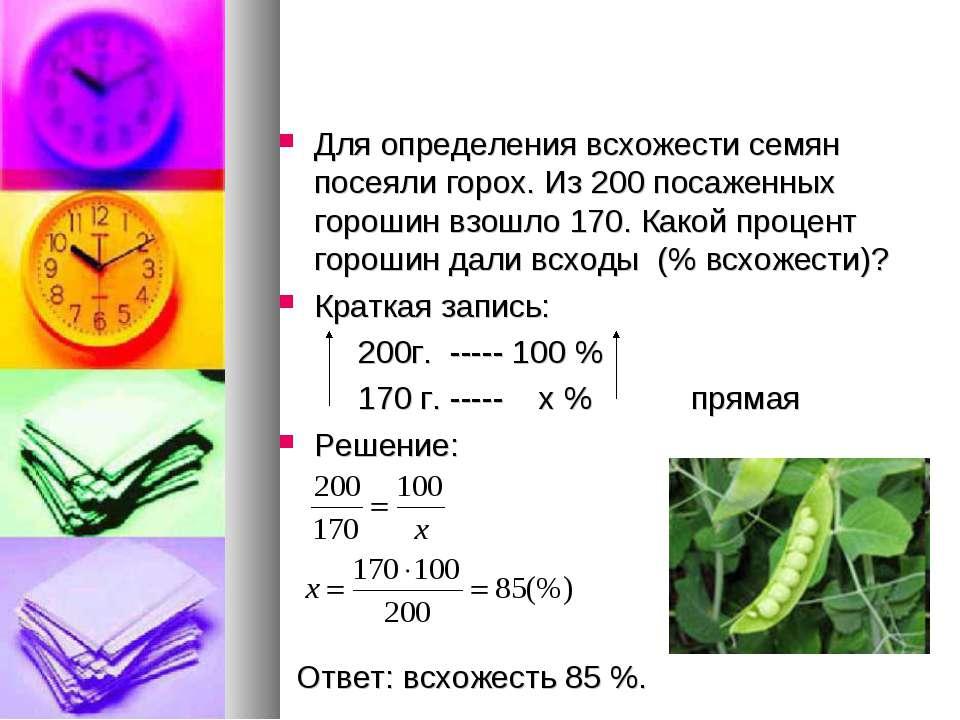 Всхожесть семян цветов и овощей