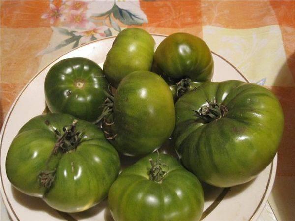Сорт помидора «сибирское яблоко»: фото, отзывы, описание, характеристика, урожайность
