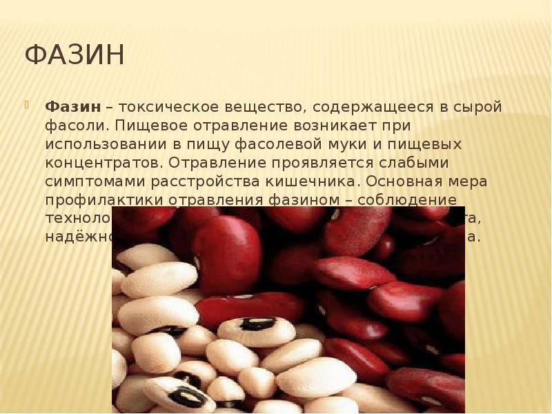 Выращивание стручковой фасоли из семян в открытом грунте на даче и в домашних условиях: посадка и уход за ней