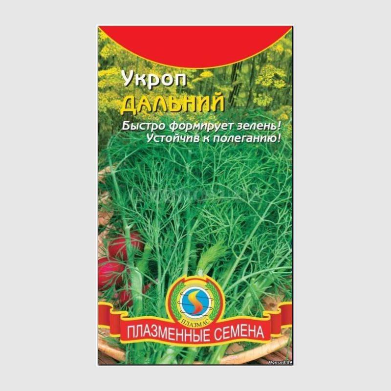Растение укроп: фото, описание, лучшие сорта, видео посева и ухода за укропом