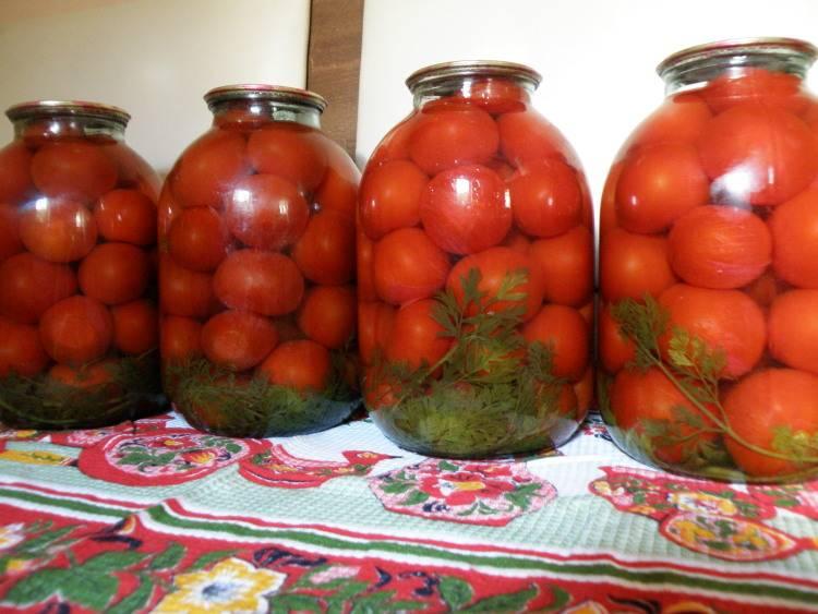 Помидоры с морковной ботвой на зиму — рецепт без стерилизации