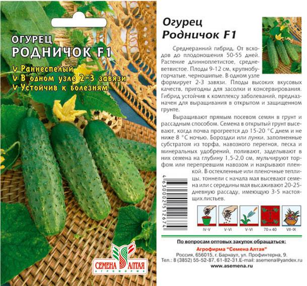 Характеристика кустового огурца Малыш и правила выращивания сорта