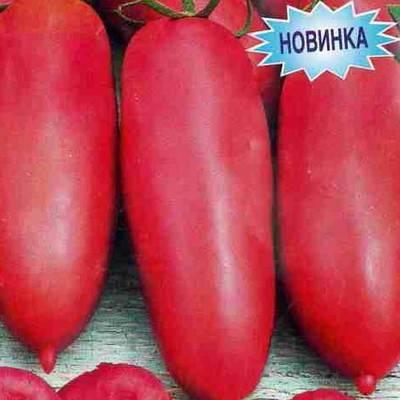 Томат пурпурная свеча: отзывы тех кто сажал помидоры об их урожайности, характеристика и описание сорта, фото куста