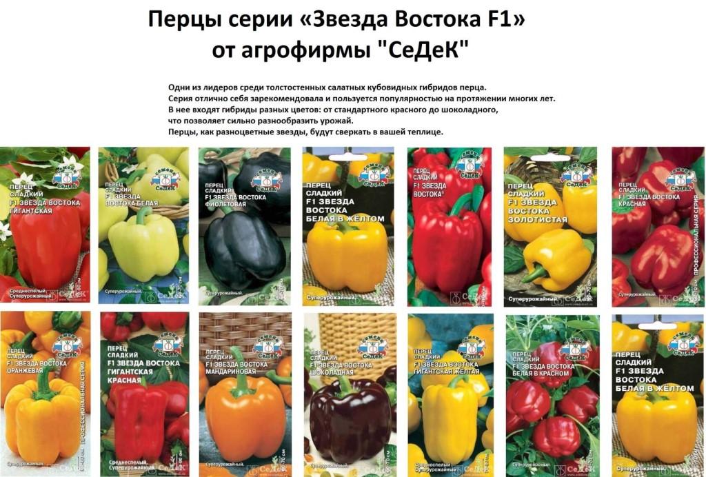 Урожайные сорта сладкого перца для открытого грунта и теплицы, их описание