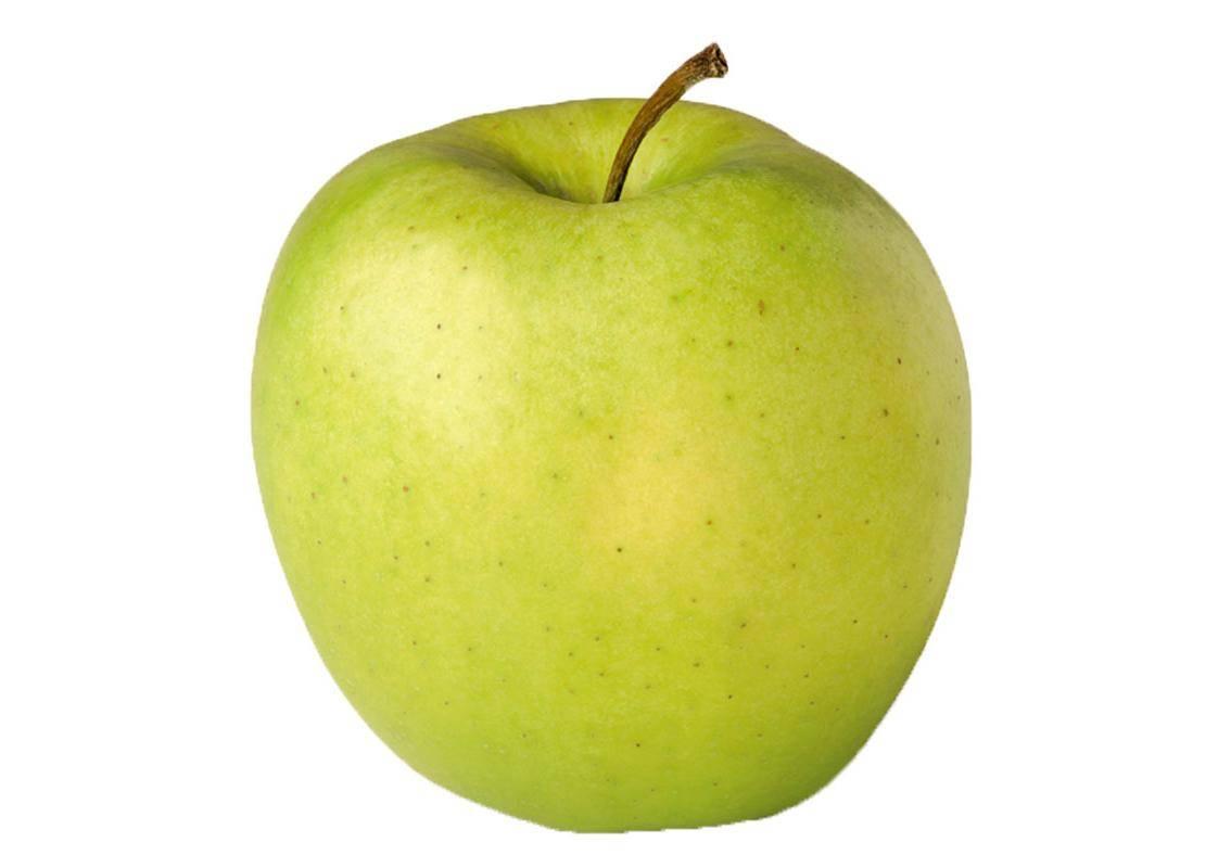 Яблоня голден делишес: описание, фото, отзывы