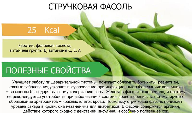 Красная фасоль: польза и вред для организма, похудения