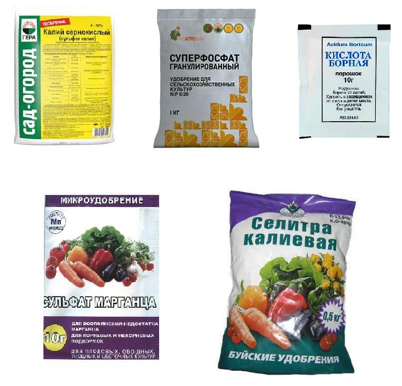 Калийные удобрения для огурцов: какие лучше, виды, особенности применения, сроки внесения