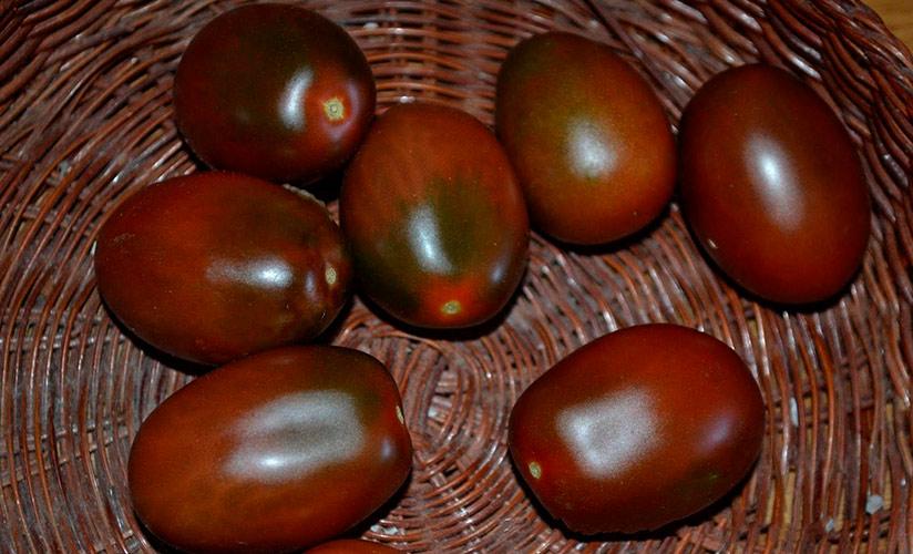 Описание томатов сорта монисто - агро журнал pole39.ru