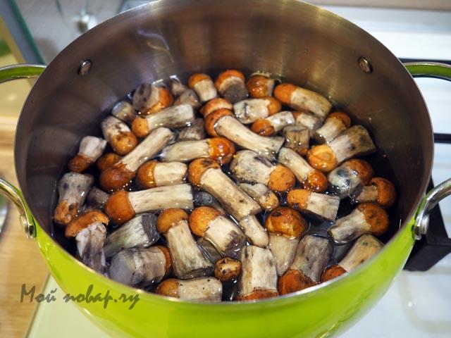 Как засолить и замариновать подосиновики горячим и холодным способом на зиму, рецепты приготовления