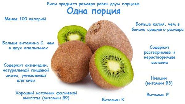 Киви: польза и вред для здоровья организма, состав и свойства фрукта