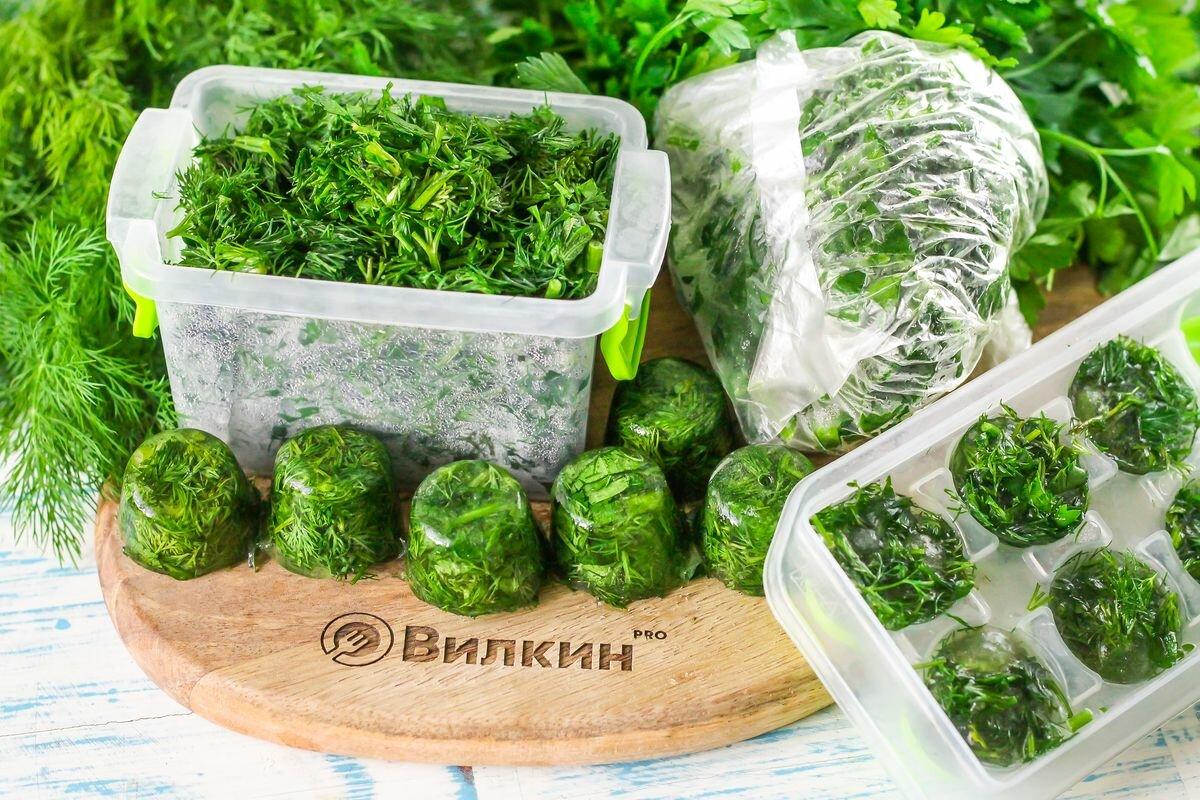 Как хранить петрушку в холодильнике свежей и на зиму
