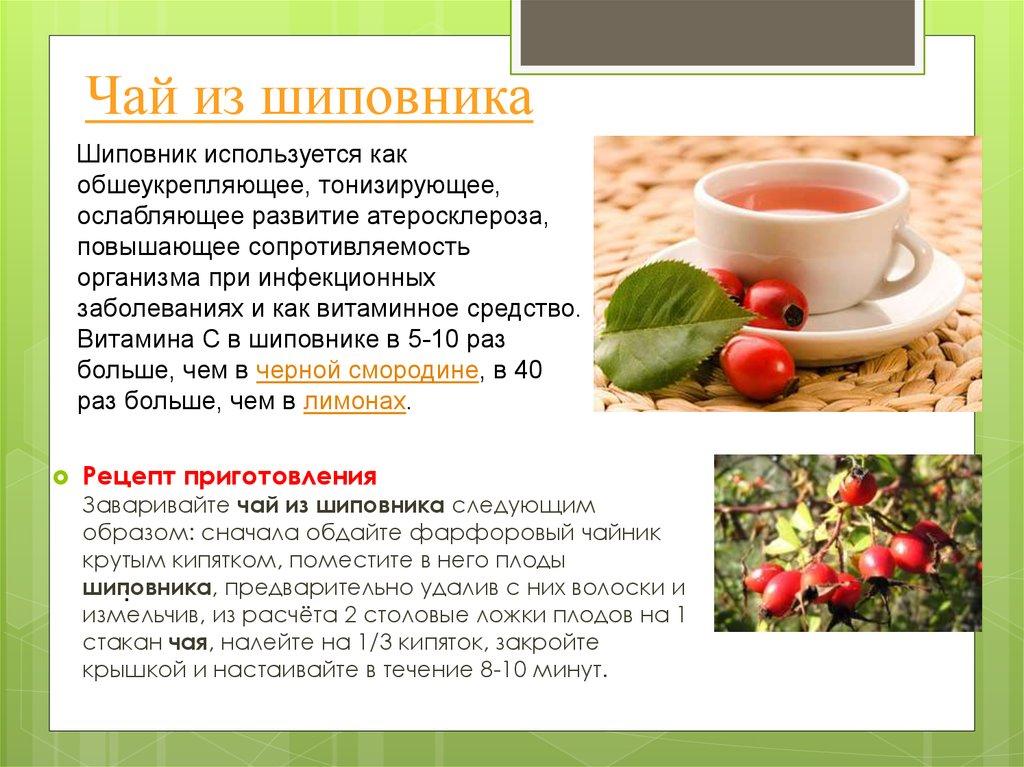 Калина: полезные рецепты на supersadovnik.ru