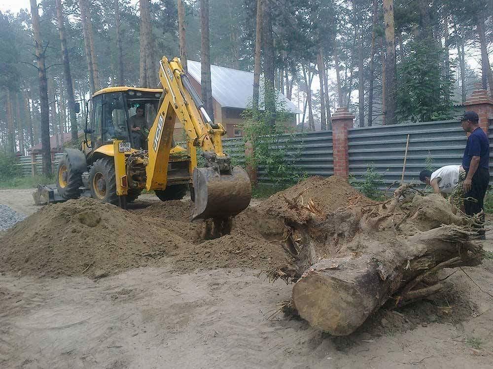 Цена корчевания деревьев на участке: сколько стоит выкорчевать 1 пень или 1 га, а также спилить кусты и небольшие деревца в разных городах россии