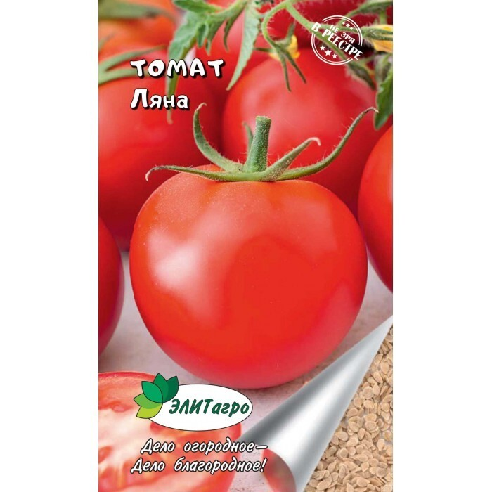 Томат ляна - описание сорта, характеристика, урожайность, отзывы, фото