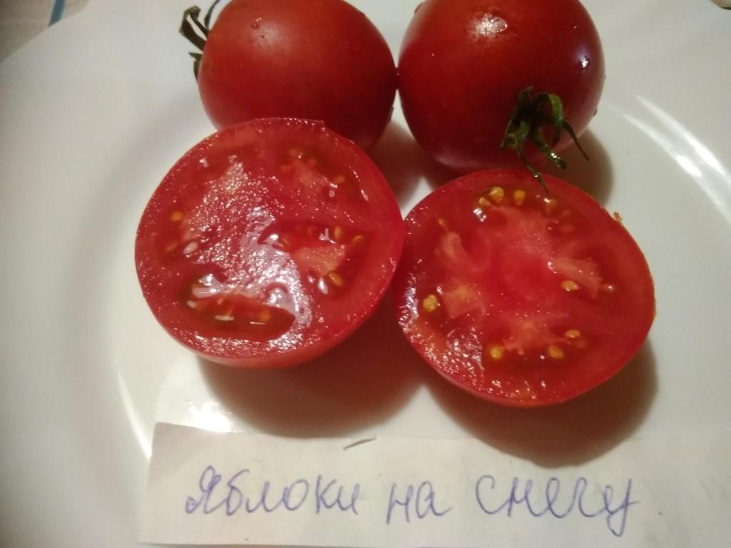 Томат сибирское яблоко: отзывы об урожайности, характеристика и описание сорта, фото семян сибирский сад