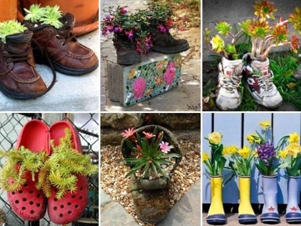 С этими цветами ваша клумба будет цвести все лето