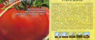 Томат французский гроздевой: описание сорта, фото, отзывы, характеристика плодов, достоинства и недостатки