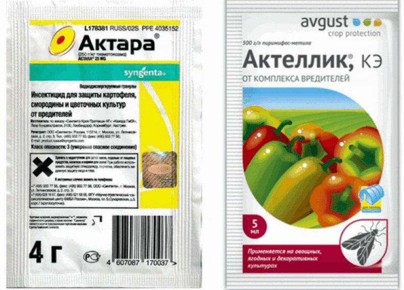 ᐉ актеллик: инструкция по применению, отзывы, от каких вредителей помогает - roza-zanoza.ru