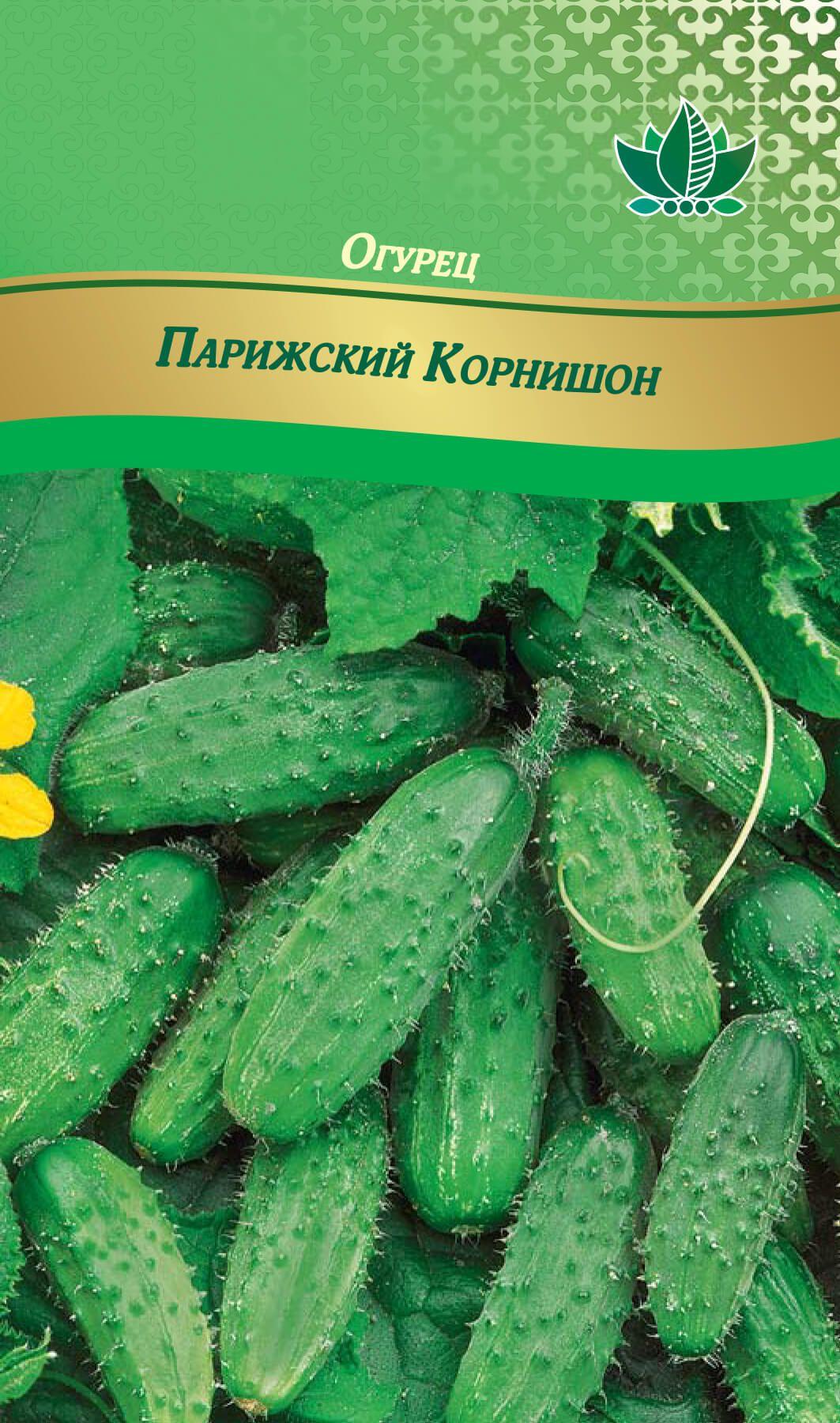 Огурцы корнишоны: описание сортов с фото для открытого грунта и теплицы с фото