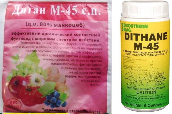Дитан м-45: инструкция по применению и состав фунгицида, дозировка и аналоги