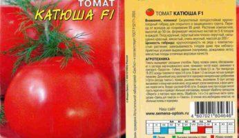 Томат катюша: описание и характеристика , отзывы, фото, урожайность   tomatland.ru