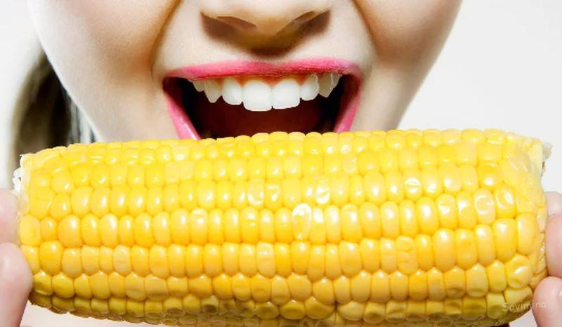 Кукуруза - польза и вред для здоровья, в каком виде лучше есть