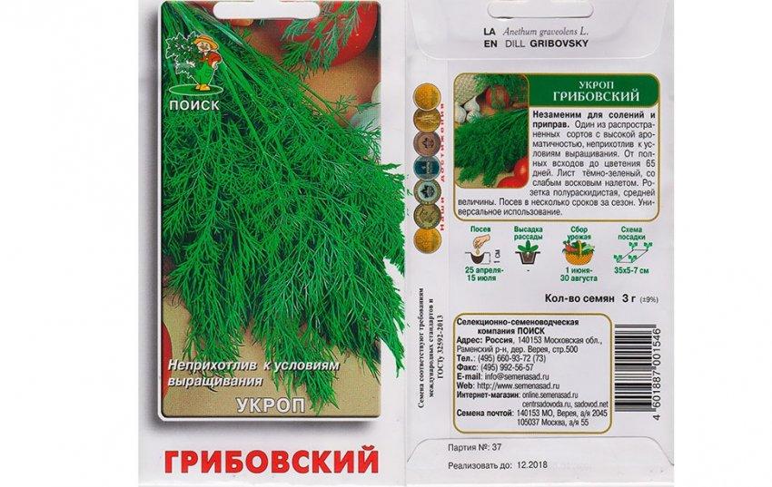 Кустовой укроп: сорта и их описание с фото, правила посадки и последующего ухода отзывы о лучших сортах