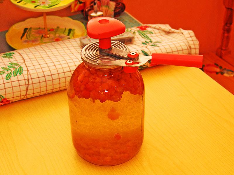 Рецепты приготовления морошки в собственном соку на зиму