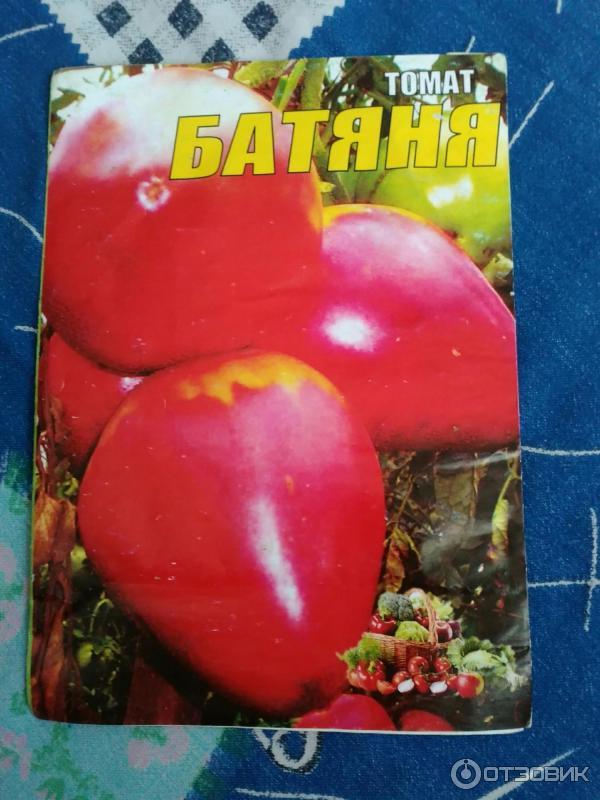 Сорт томата – батяня: описание, отзывы и особенности ухода