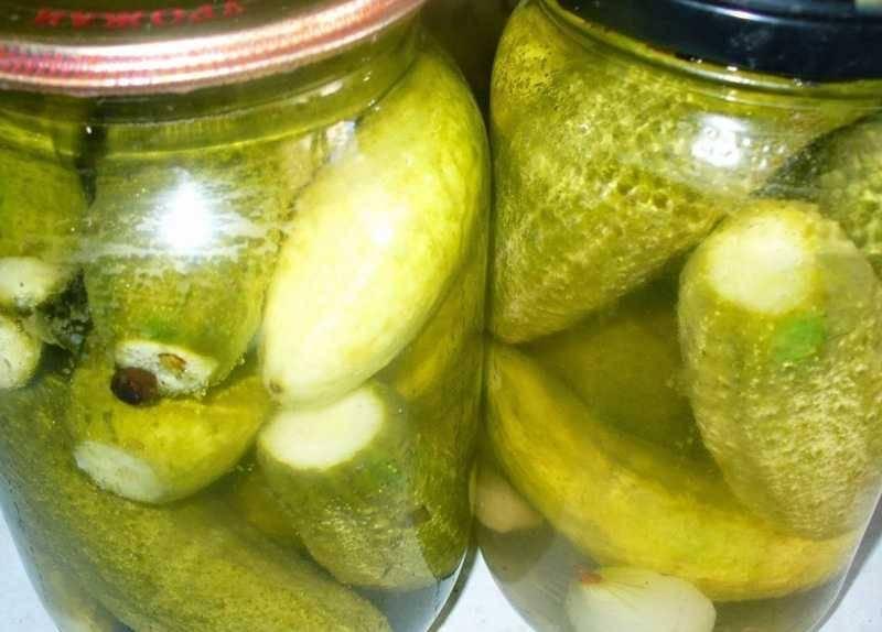 Как заготовить на зиму маринованные и консервированные огурцы по рецепту «болгария отдыхает»