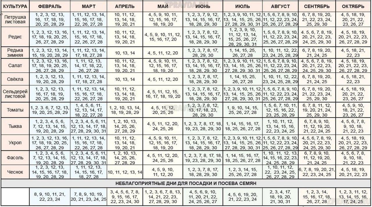 Лунный посевной календарь 2021 для садовода, огородника и цветовода – таблицы по месяцам и дням!