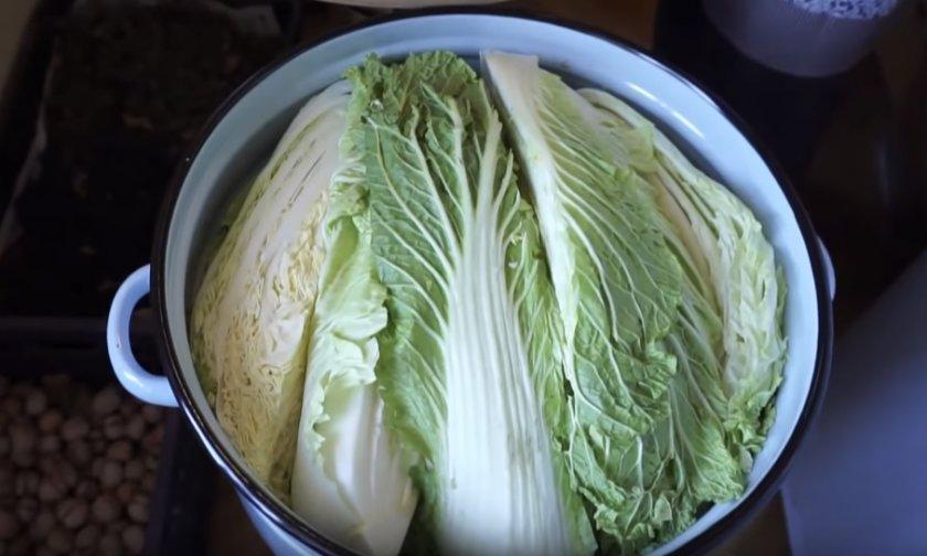Как хранить пекинскую капусту на зиму в домашних условиях в холодильнике? русский фермер