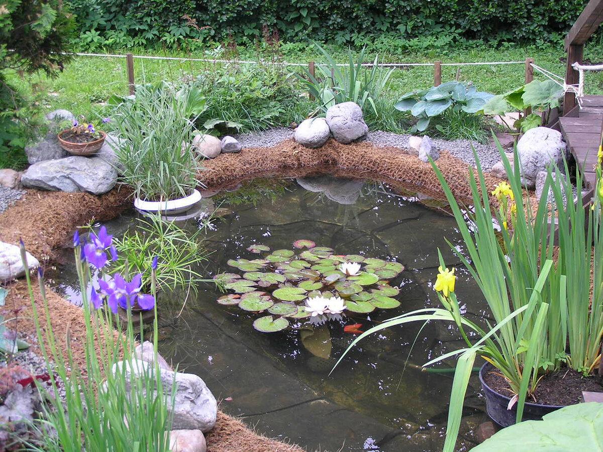 Готовим садовый пруд к зиме. как подготовить декоративный водоем к зимним холодам: рекомендации и правила можно зимой добавить воду в пруд