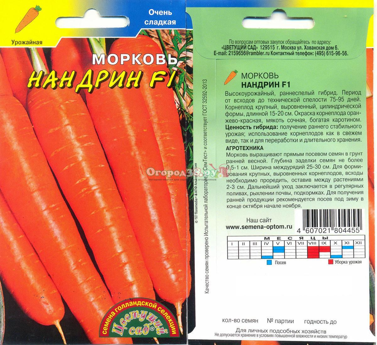 Морковь абако: подробная характеристика и описание раннего сорта, каковы его плюсы и минусы, где в россии его сажают, а также как выращивать в разных регионах
