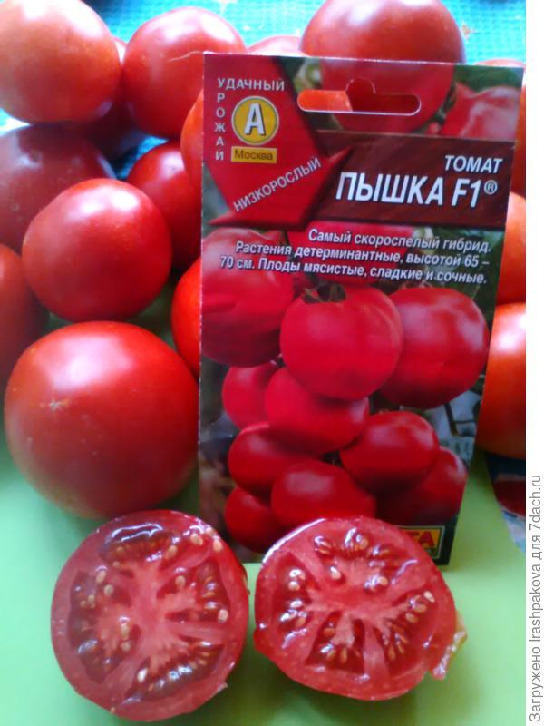 Самые сладкие томаты по отзывам огородников