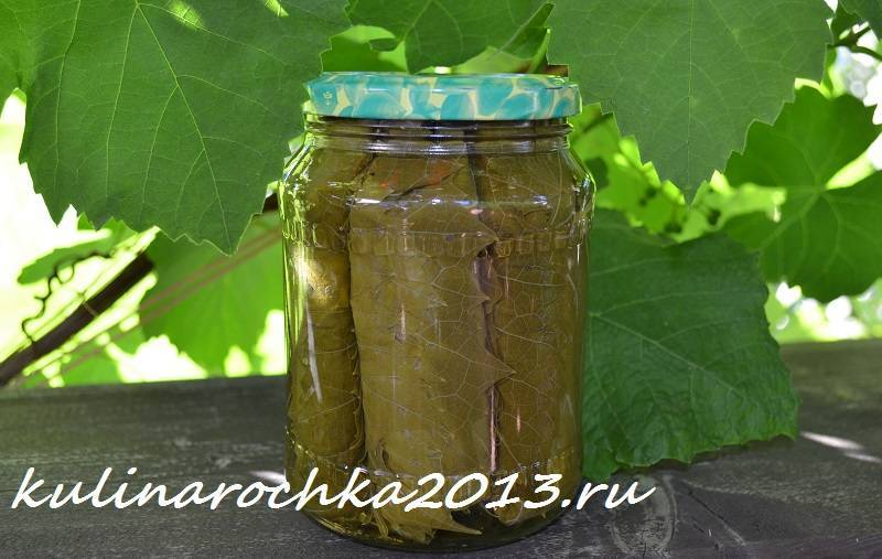 Пошаговый рецепт заготовки виноградных листьев на зиму для долмы