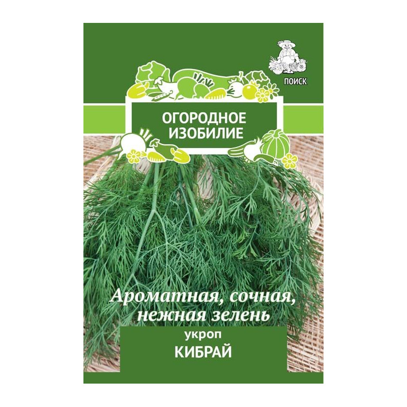 Укроп кибрай: характеристика и описание сорта, фото, аналоги, а также основные правила выращивания и ухода в открытом грунте