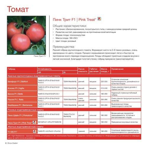 Томат пинк леди: описание индетерминантного сорта с фото